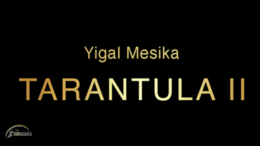 Tarantula II (Online Instructions and Gimmick) by Yigal Mesika