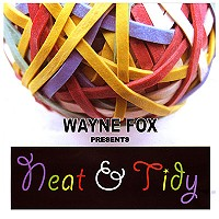 Neat And Tidy (With DVD) by Wayne Fox