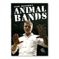 Animal Bands by Liam Montier and Big Blind Media