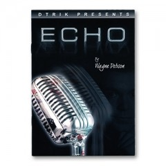 Echo by Wayne Dobson